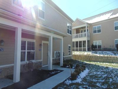 Lewis Center Condo Contingent Finance And Inspect: 3736 Evelynton Avenue