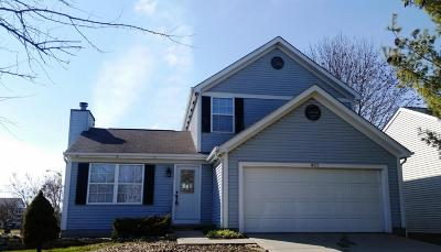 Galloway OH Single Family Home For Sale: $174,900