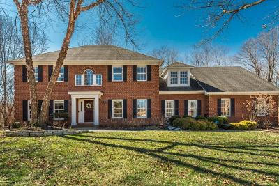Powell OH Single Family Home For Sale: $674,900