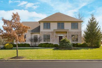 Powell Single Family Home For Sale: 8995 Shaffer Drive
