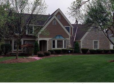 Dublin Single Family Home Contingent Finance And Inspect: 5755 Rushwood Drive
