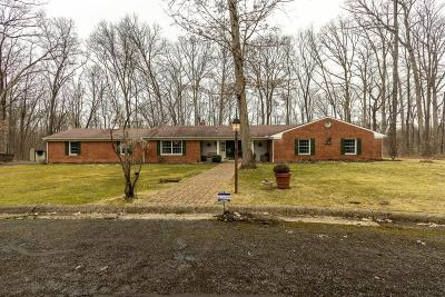 Westerville Single Family Home For Sale: 4410 Ravine Drive