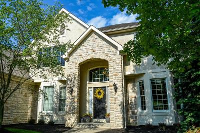 Dublin Single Family Home For Sale: 7820 Windy Hill Court