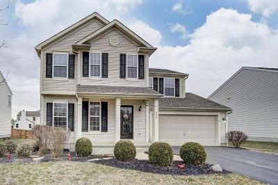 Delaware Single Family Home For Sale: 407 Cherry Leaf Road
