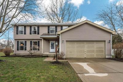 Hilliard Single Family Home For Sale: 4465 Knickel Drive