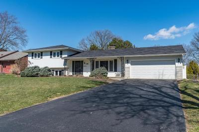 Upper Arlington Single Family Home Contingent Finance And Inspect: 1468 Zollinger Road