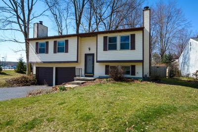 Westerville Single Family Home Contingent Finance And Inspect: 5999 Carnation Drive
