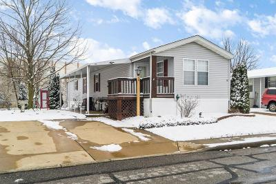 Delaware Single Family Home For Sale: 59 Birch Row Drive