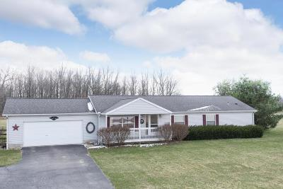 Delaware Single Family Home For Sale: 6636 McCurdy Road