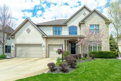 Westerville Single Family Home For Sale: 8041 Saybrook Drive