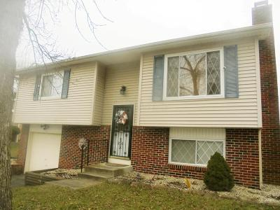Groveport Single Family Home For Sale: 4099 Platte Avenue
