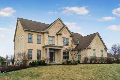 Dublin  Single Family Home Contingent Finance And Inspect: 10041 Archer Lane