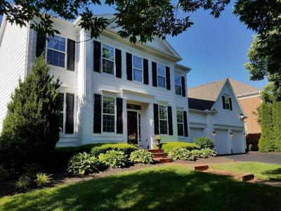 New Albany Single Family Home For Sale: 7116 Tumblebrook Drive