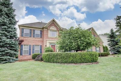 Hilliard Single Family Home For Sale: 3462 Heritage Oaks Drive