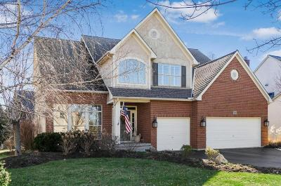 Dublin Single Family Home Contingent Finance And Inspect: 7684 Quetzal Drive