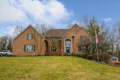 Pickerington Single Family Home Contingent Finance And Inspect: 9443 Haaf Farm Drive