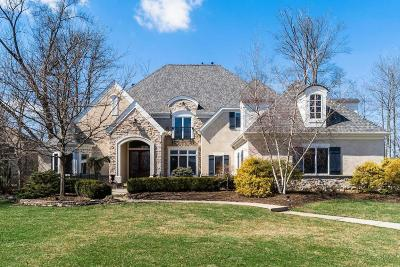 Dublin Single Family Home For Sale: 8188 Tillinghast Drive