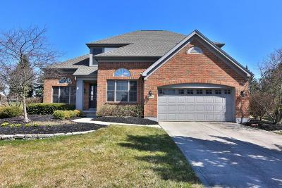 Dublin Single Family Home Contingent Finance And Inspect: 8870 Sunart Court N