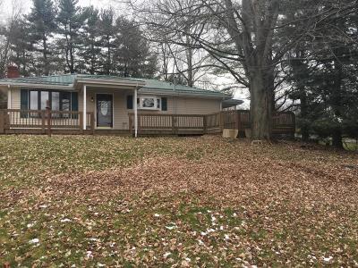 Newark Single Family Home For Sale: 2849 Dayton Road NE