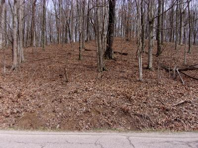 Chillicothe OH Residential Lots & Land For Sale: $32,900