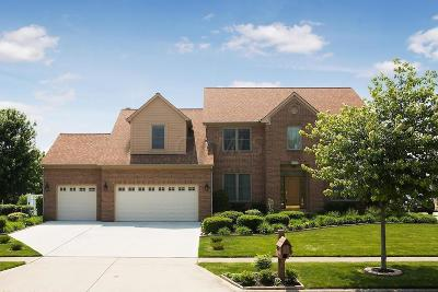 Grove City Single Family Home For Sale: 2451 Milligan Grove