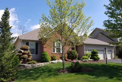Dublin Single Family Home For Sale: 4362 Yellow Wood Drive