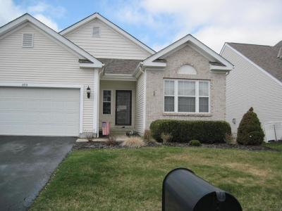 Blacklick Single Family Home Contingent Finance And Inspect: 659 Thornbush Drive