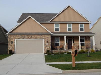 Plain City Single Family Home Contingent Finance And Inspect: 10200 Tuscany Drive