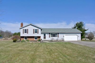 Galena Single Family Home Contingent Finance And Inspect: 11719 Gorsuch Road