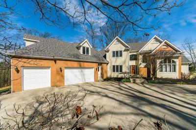 Blacklick Single Family Home For Sale: 3300 Mann Road