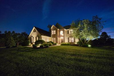 Galena Single Family Home For Sale: 2556 Open Bay Court