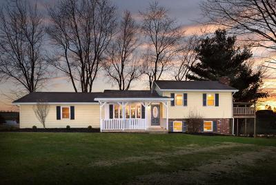 Utica Single Family Home Contingent Finance And Inspect: 19360 Bell Church Road
