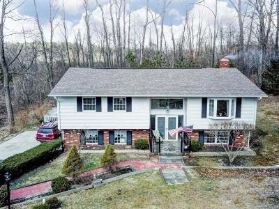Granville Single Family Home Contingent Finance And Inspect: 297 Pleasant View Drive NE
