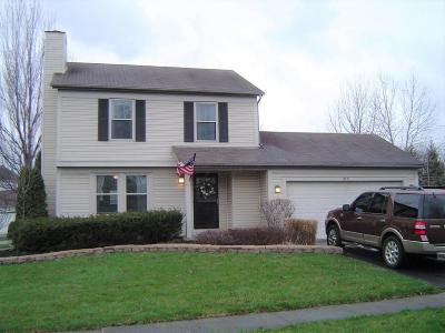 Pickerington Single Family Home Contingent Finance And Inspect: 3171 Southern Hills Drive