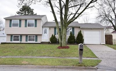 Grove City Single Family Home Contingent Finance And Inspect: 2657 Blue Rock Boulevard