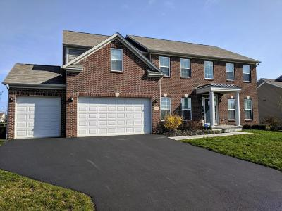 Grove City Single Family Home For Sale: 5876 Blue Star Drive