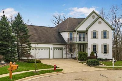Pickerington Single Family Home Contingent Finance And Inspect: 214 Cherokee Court