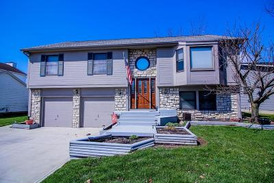 Plain City Single Family Home Contingent Finance And Inspect: 490 Carriage Drive