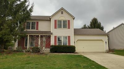 Single Family Home Contingent Finance And Inspect: 333 Central Station Drive