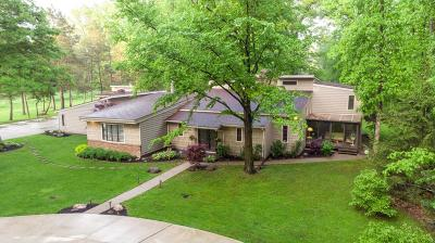 Westerville Single Family Home For Sale: 7476 Lee Road