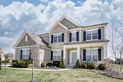 Dublin Single Family Home Contingent Finance And Inspect: 6878 Sagestone Drive