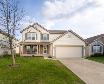Hilliard Single Family Home Contingent Finance And Inspect: 3202 Andrew James Drive