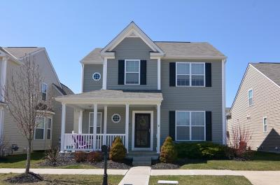 Dublin Single Family Home Contingent Finance And Inspect: 5695 Gingrey Road
