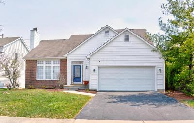 New Albany OH Single Family Home For Sale: $324,900