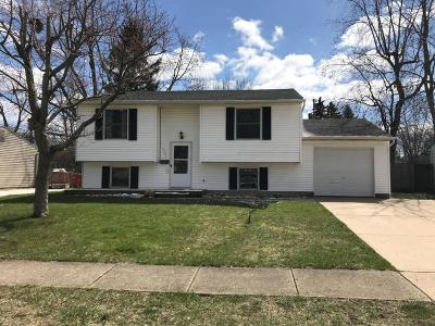 Grove City Single Family Home Contingent Finance And Inspect: 2721 Brunswick Drive