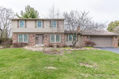 Dublin Single Family Home Contingent Finance And Inspect: 5412 Adventure Drive