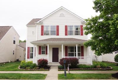 New Albany OH Single Family Home For Sale: $249,900