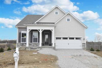 Westerville Single Family Home For Sale: 4421 McAlister Park Drive #Lot 8164