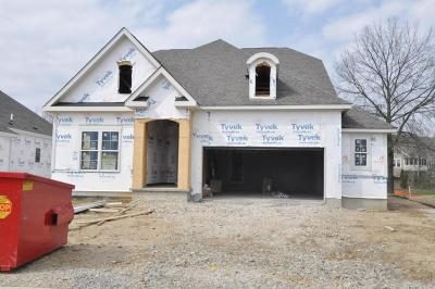 Dublin Single Family Home For Sale: 6646 Firenza Place #Lot 114