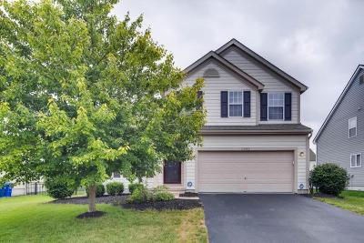 Hilliard Single Family Home For Sale: 3082 Gilridge Drive